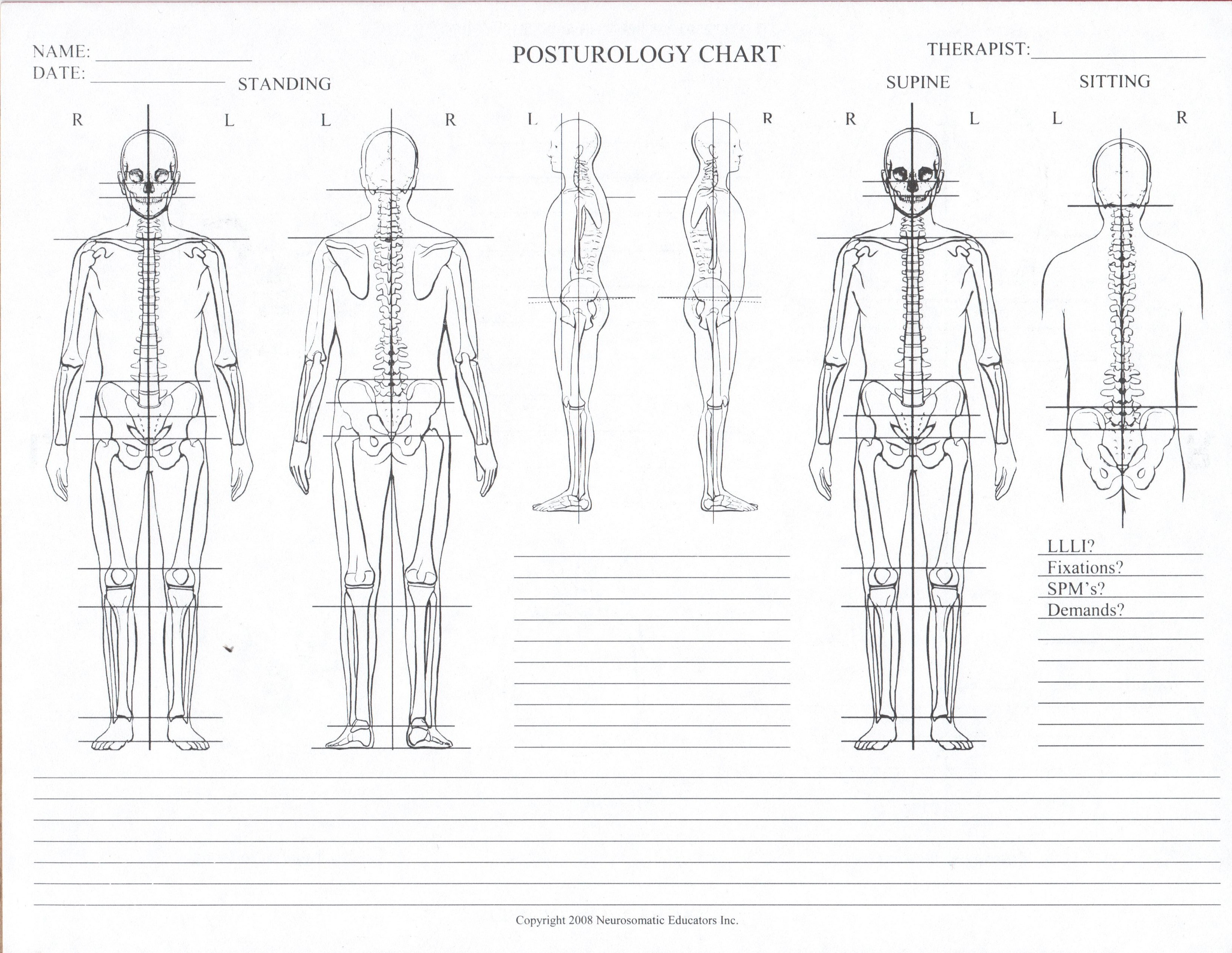 blank body chart - free download